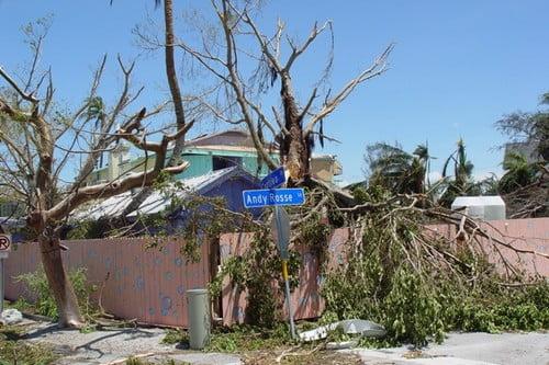 Uszkodzenia spowodowane huraganem Charley